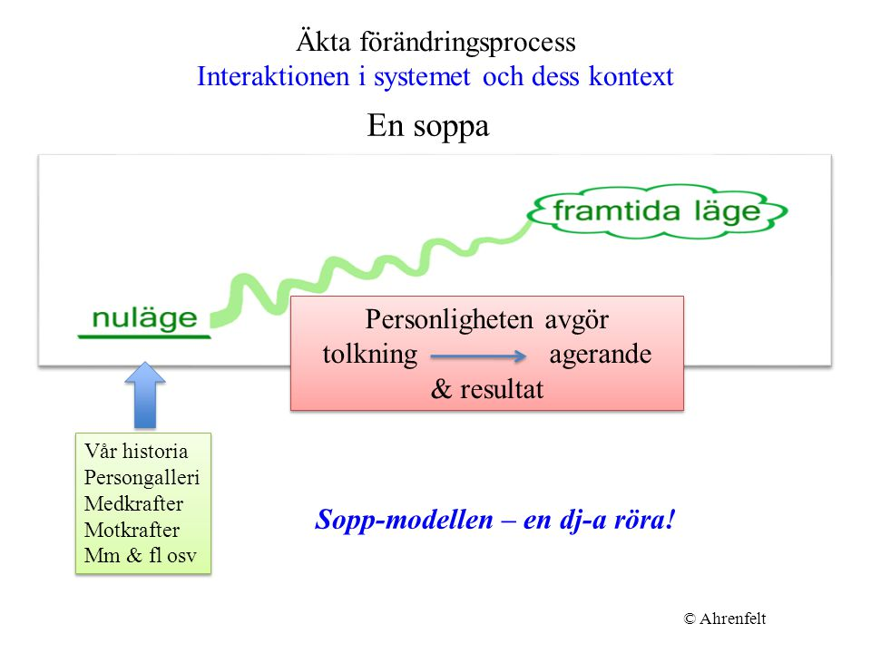 Äkta förändringsprocess Interaktionen i systemet och dess kontext