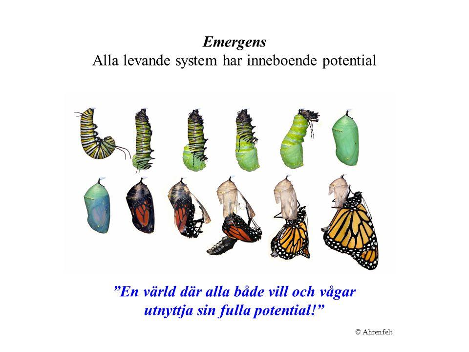 Emergens Alla levande system har inneboende potential
