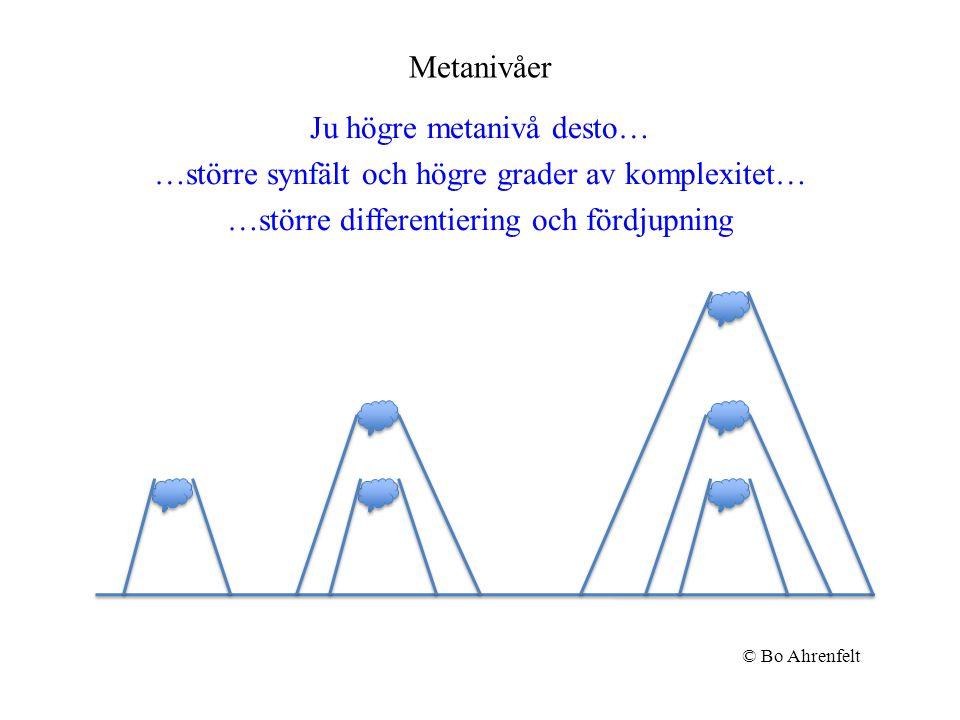 Metanivåer Ju högre metanivå desto… …större synfält och högre grader av komplexitet… …större differentiering och fördjupning