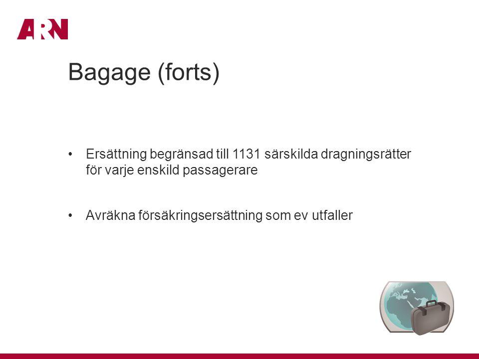 Bagage (forts) Ersättning begränsad till 1131 särskilda dragningsrätter för varje enskild passagerare.