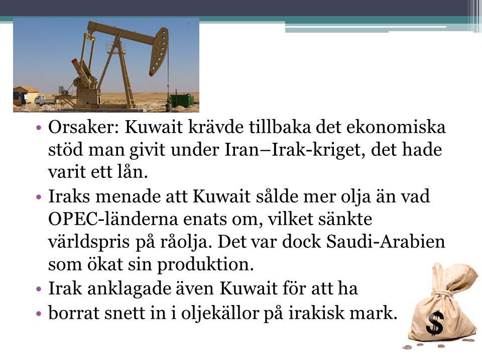 Orsaker: Kuwait krävde tillbaka det ekonomiska stöd man givit under Iran–Irak-kriget, det hade varit ett lån.