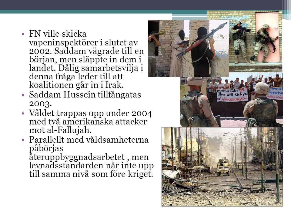 FN ville skicka vapeninspektörer i slutet av 2002