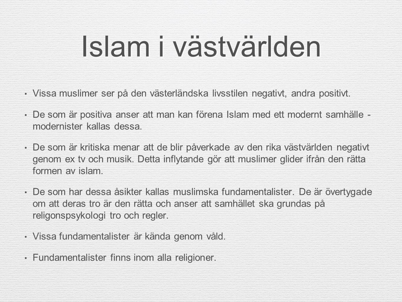 Islam i västvärlden Vissa muslimer ser på den västerländska livsstilen negativt, andra positivt.