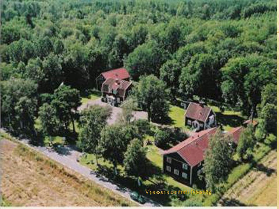 Vipassana centret i Ödeshög