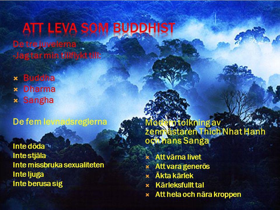 ATT LEVA SOM BUDDHIST De tre juvelerna -Jag tar min tillflykt till: