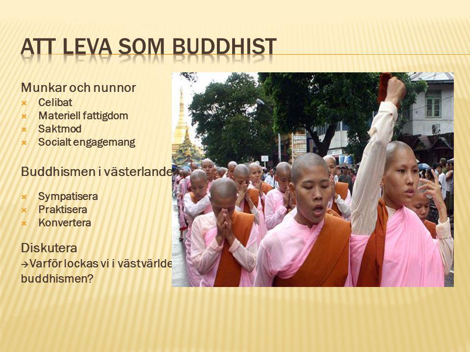 ATT LEVA SOM BUDDHIST Munkar och nunnor Buddhismen i västerlandet