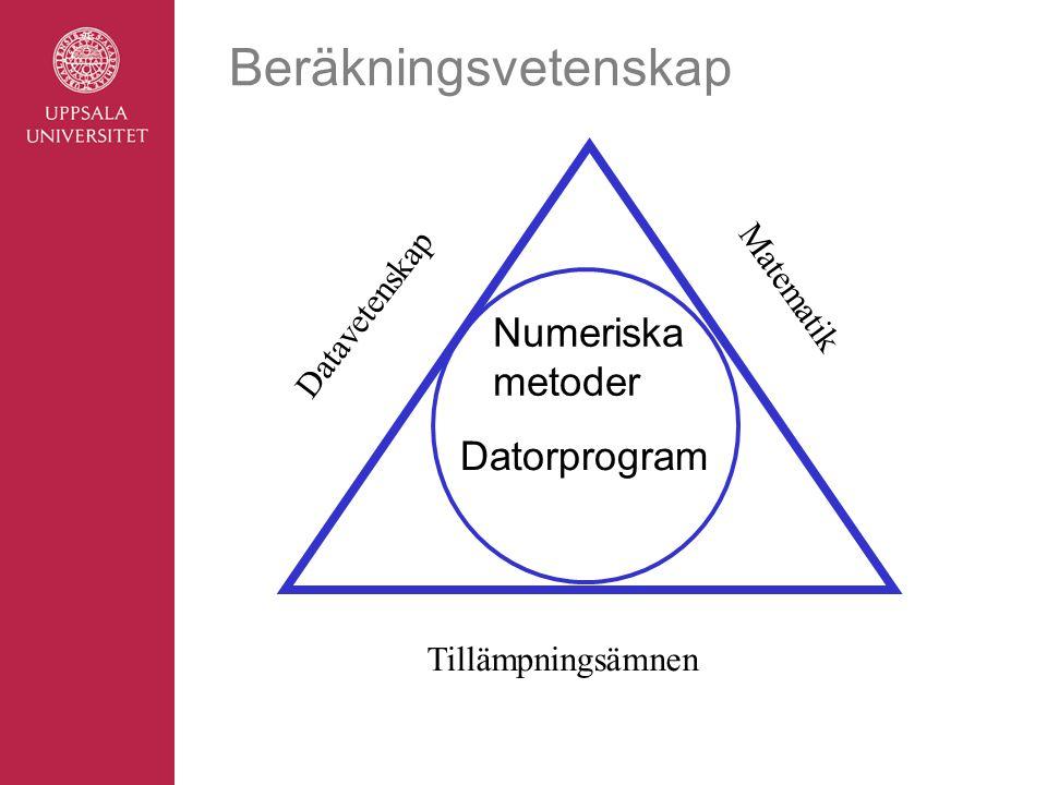 Beräkningsvetenskap Numeriska metoder Datorprogram Datavetenskap