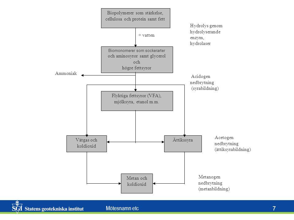 Biopolymerer som stärkelse, cellulosa och protein samt fett