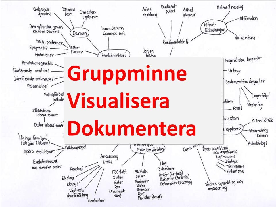 Gruppminne Visualisera Dokumentera