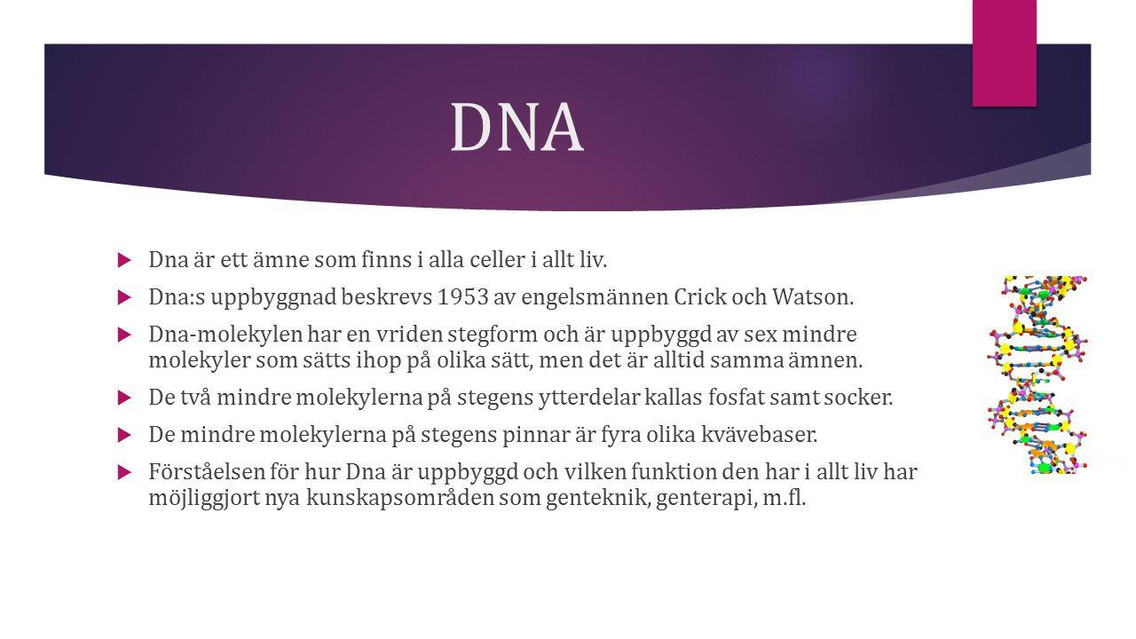 DNA Dna är ett ämne som finns i alla celler i allt liv.