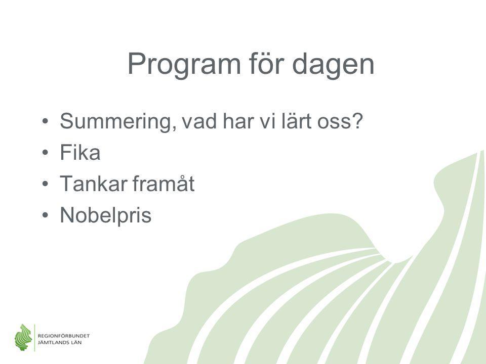 Program för dagen Summering, vad har vi lärt oss Fika Tankar framåt
