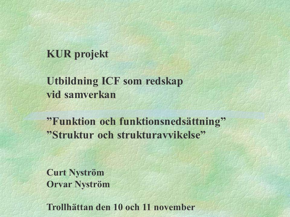 Utbildning ICF som redskap vid samverkan