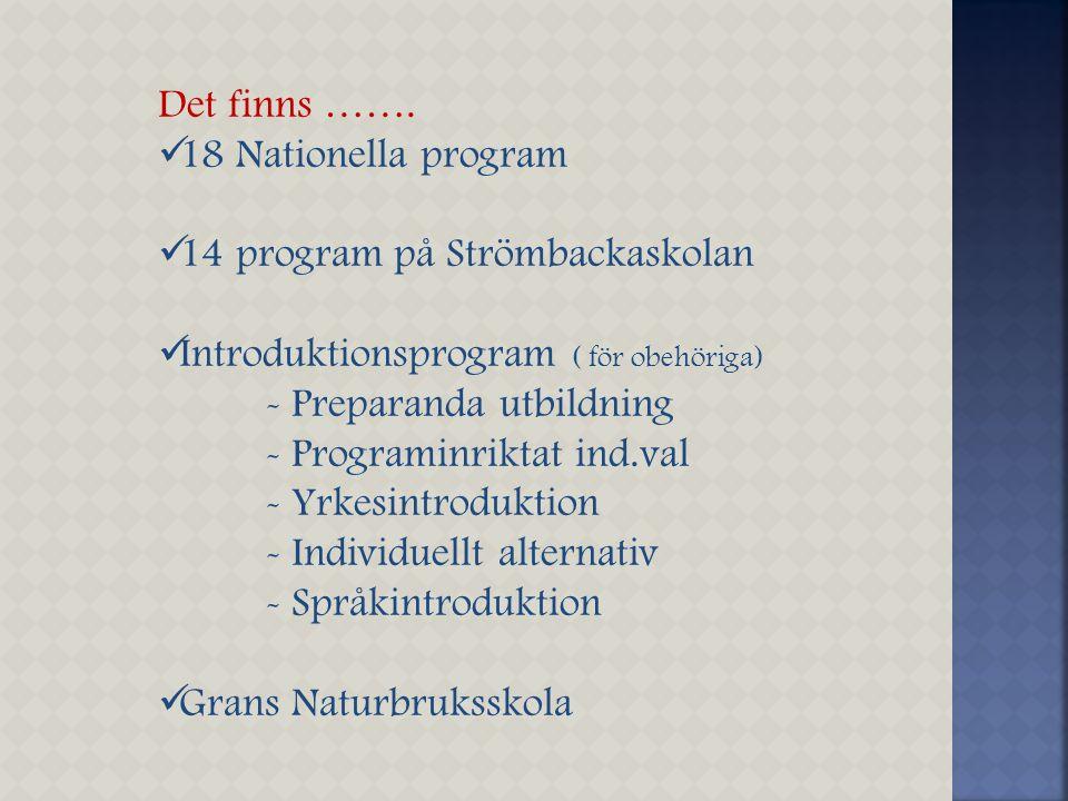 Det finns ……. 18 Nationella program. 14 program på Strömbackaskolan. Introduktionsprogram ( för obehöriga)
