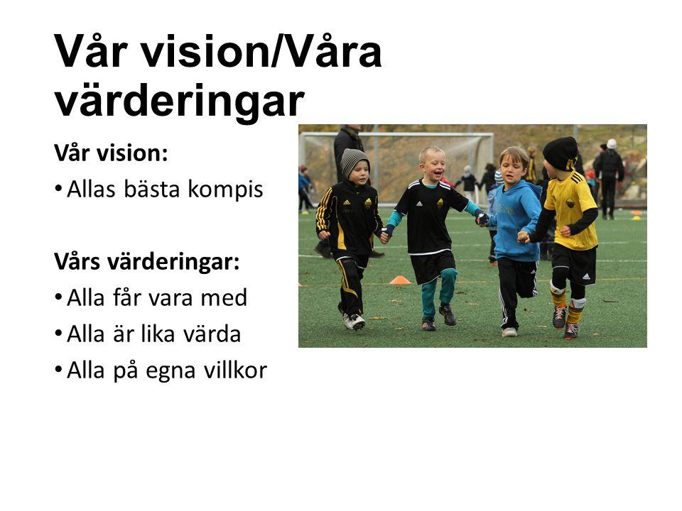 Vår vision/Våra värderingar