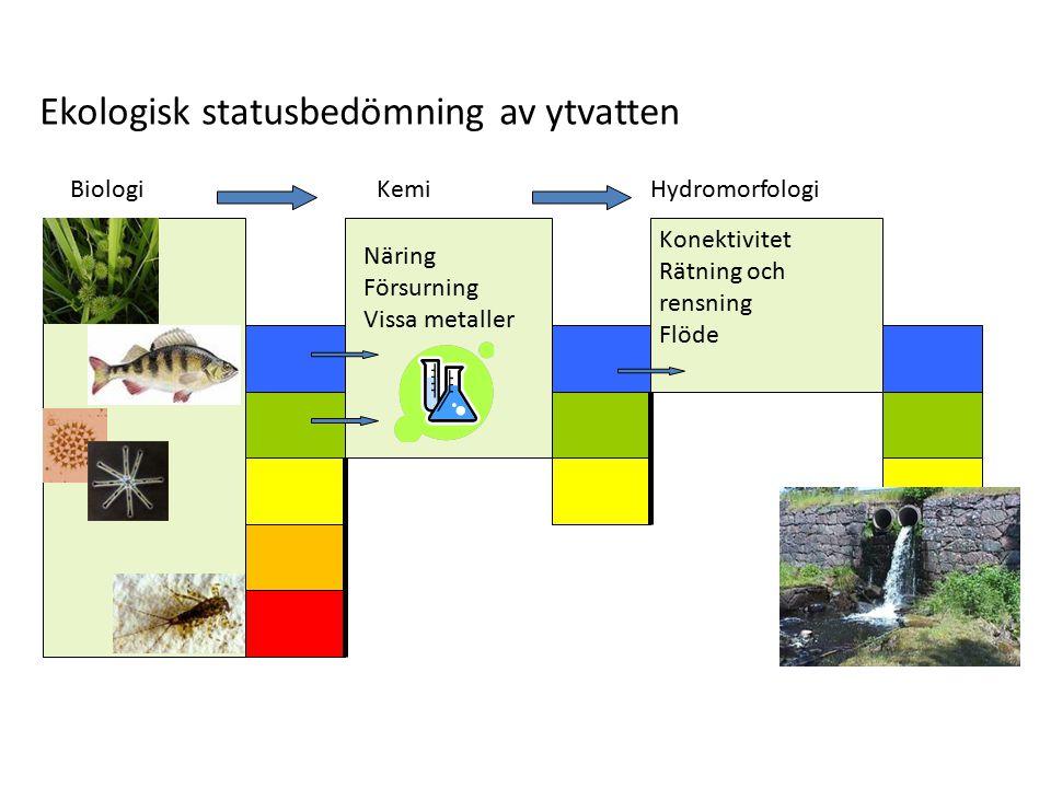 Ekologisk statusbedömning av ytvatten