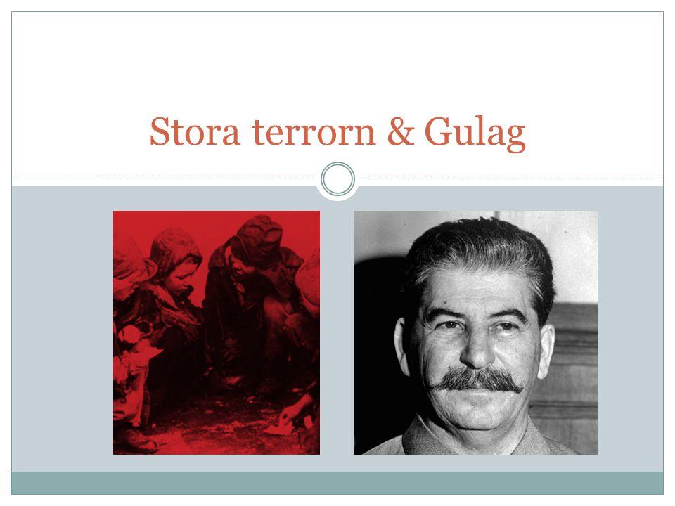 Stora terrorn & Gulag