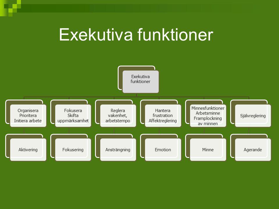 Exekutiva funktioner Exekutiva funktioner Organisera Prioritera