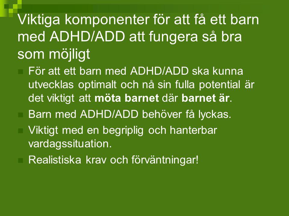 Viktiga komponenter för att få ett barn med ADHD/ADD att fungera så bra som möjligt