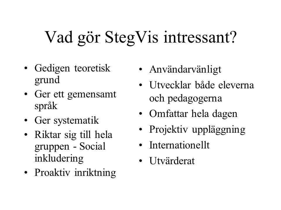 Vad gör StegVis intressant