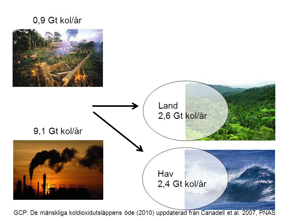 0,9 Gt kol/år Land 2,6 Gt kol/år 9,1 Gt kol/år Hav 2,4 Gt kol/år 31