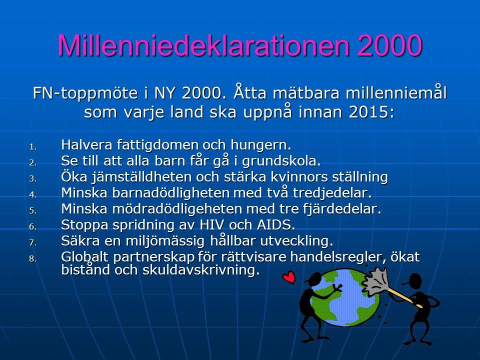 Millenniedeklarationen 2000