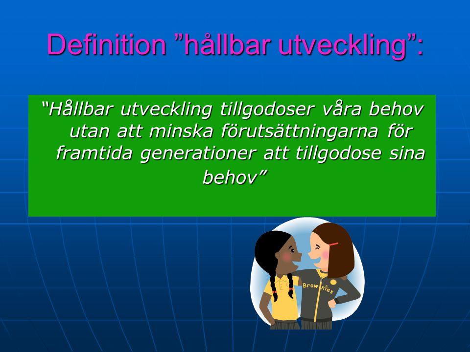 Definition hållbar utveckling :