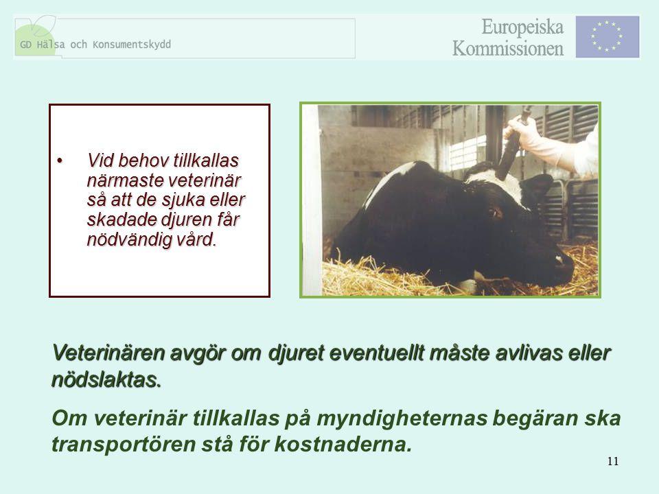 Veterinären avgör om djuret eventuellt måste avlivas eller nödslaktas.