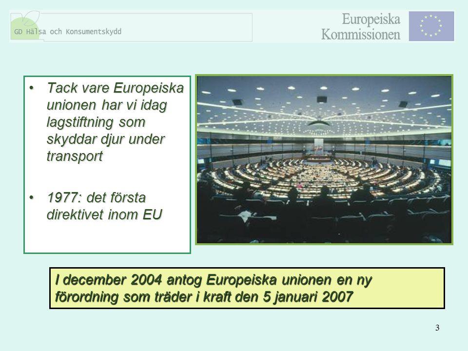 Tack vare Europeiska unionen har vi idag lagstiftning som skyddar djur under transport