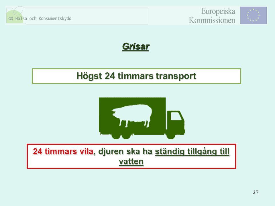Grisar Högst 24 timmars transport