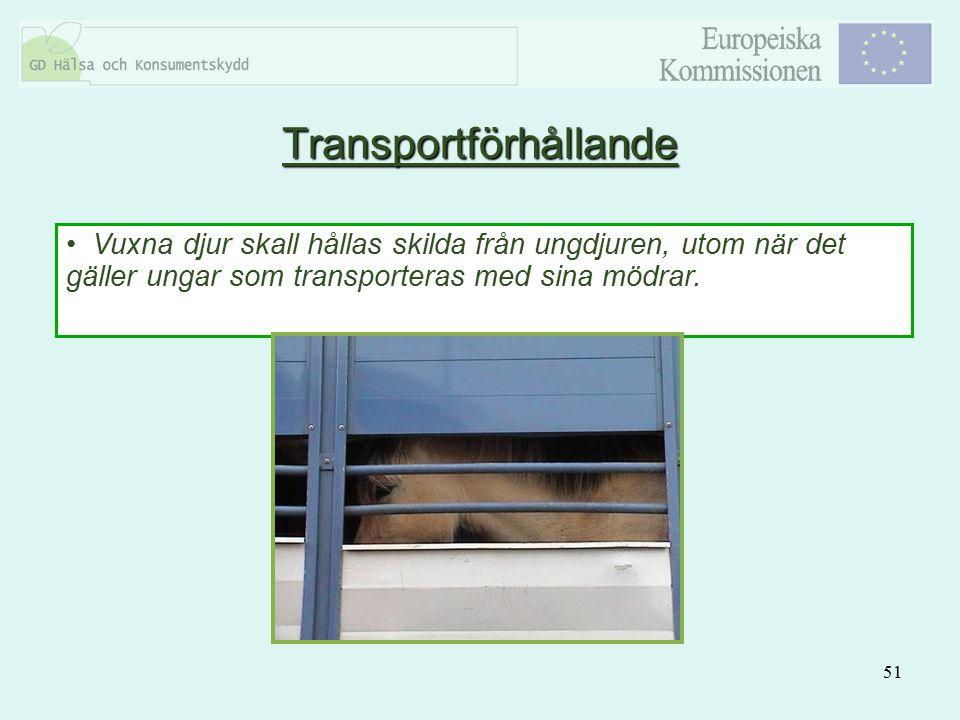 Transportförhållande