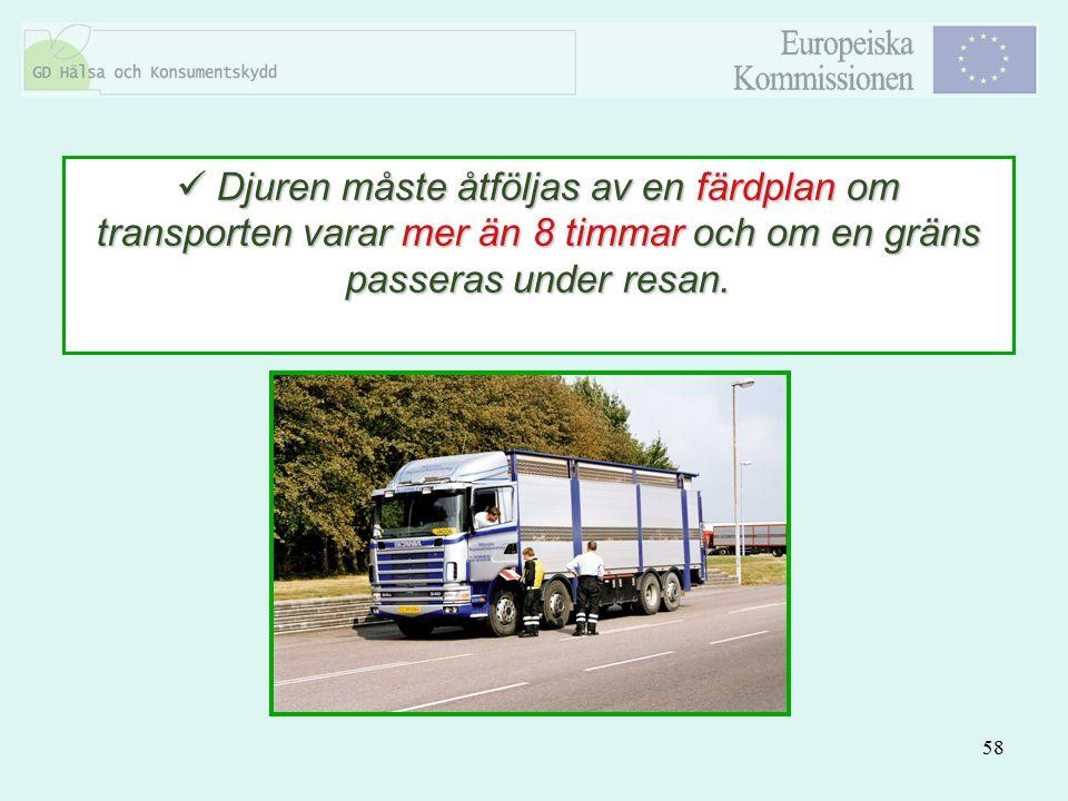 Djuren måste åtföljas av en färdplan om transporten varar mer än 8 timmar och om en gräns passeras under resan.