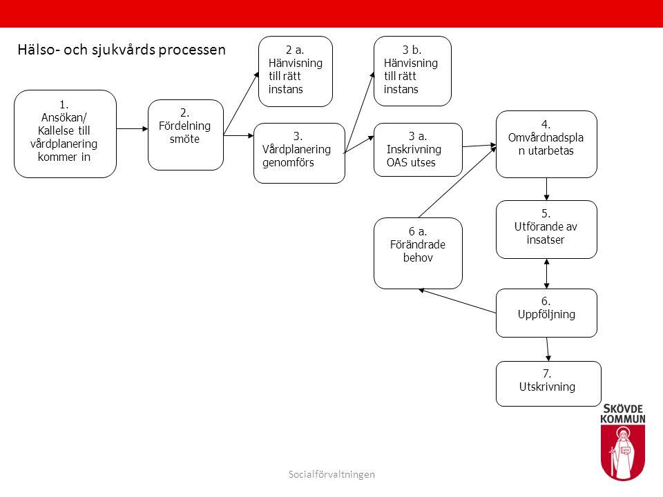 Hälso- och sjukvårds processen