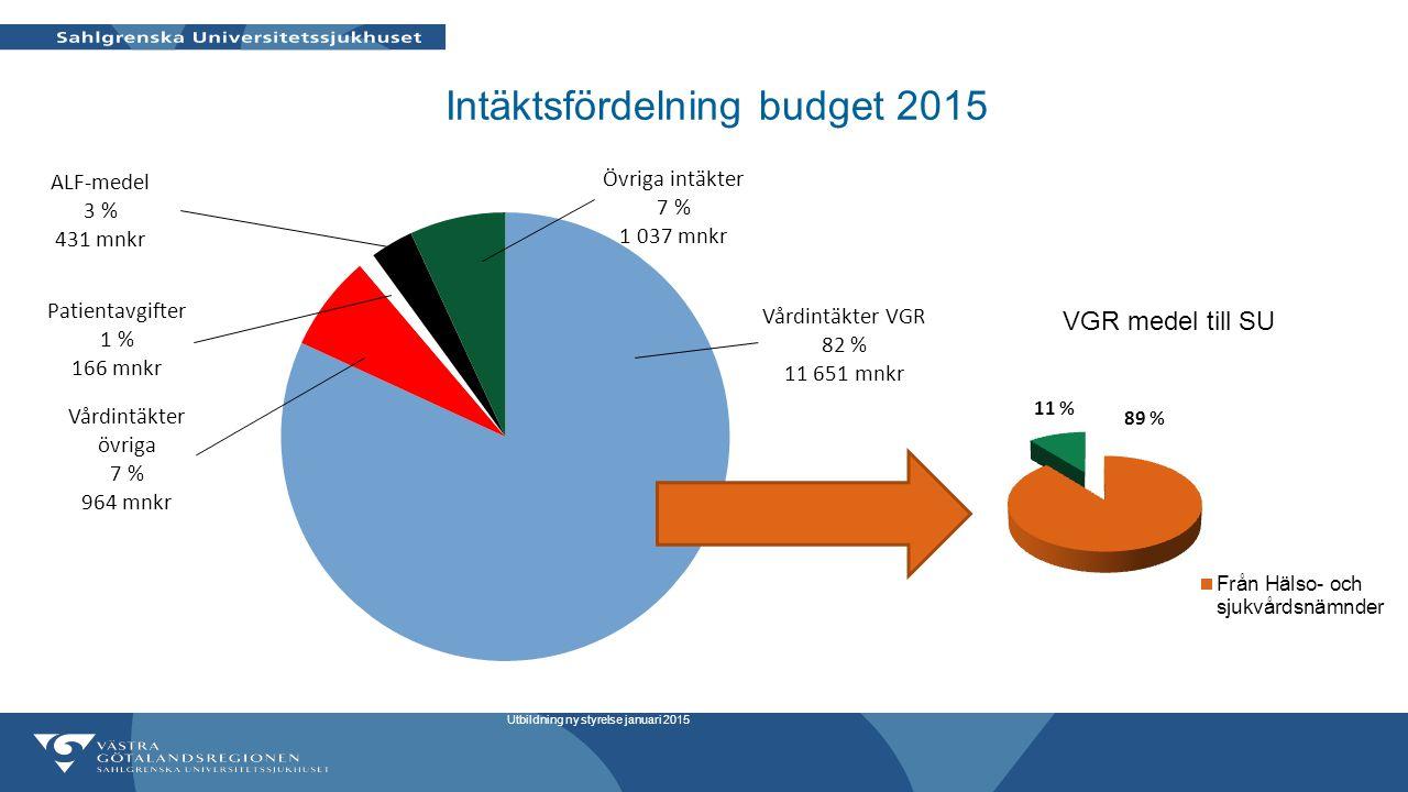 Intäktsfördelning budget 2015