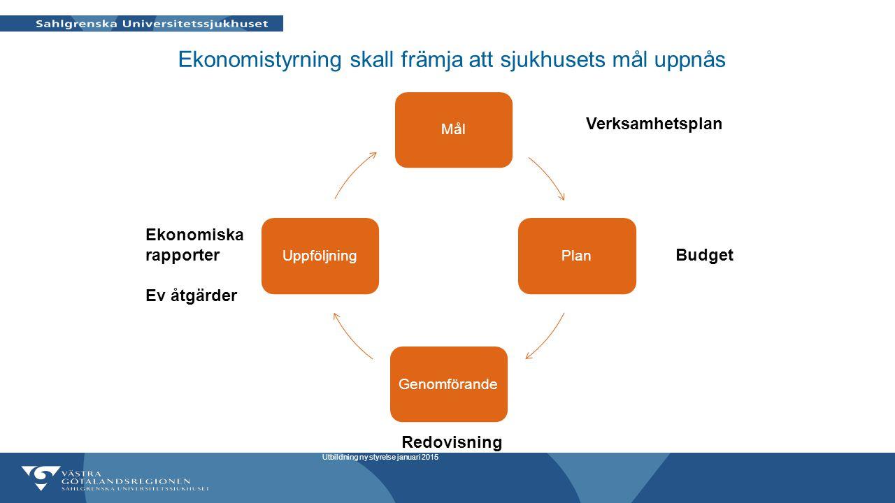 Ekonomistyrning skall främja att sjukhusets mål uppnås