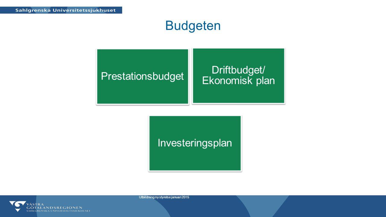 Driftbudget/ Ekonomisk plan