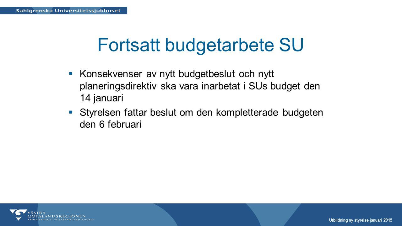 Fortsatt budgetarbete SU