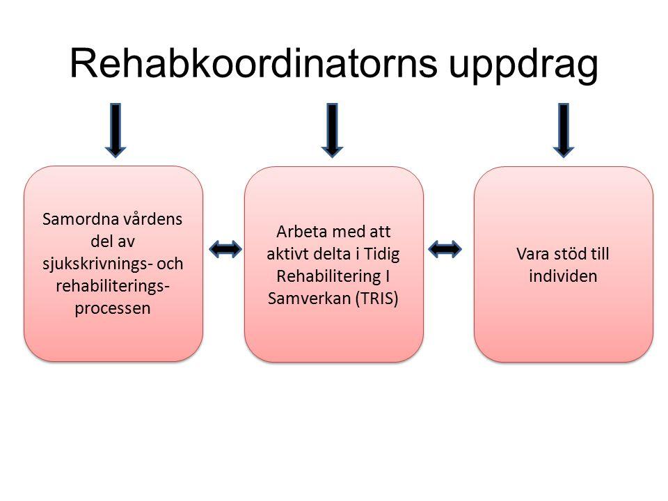 Rehabkoordinatorns uppdrag