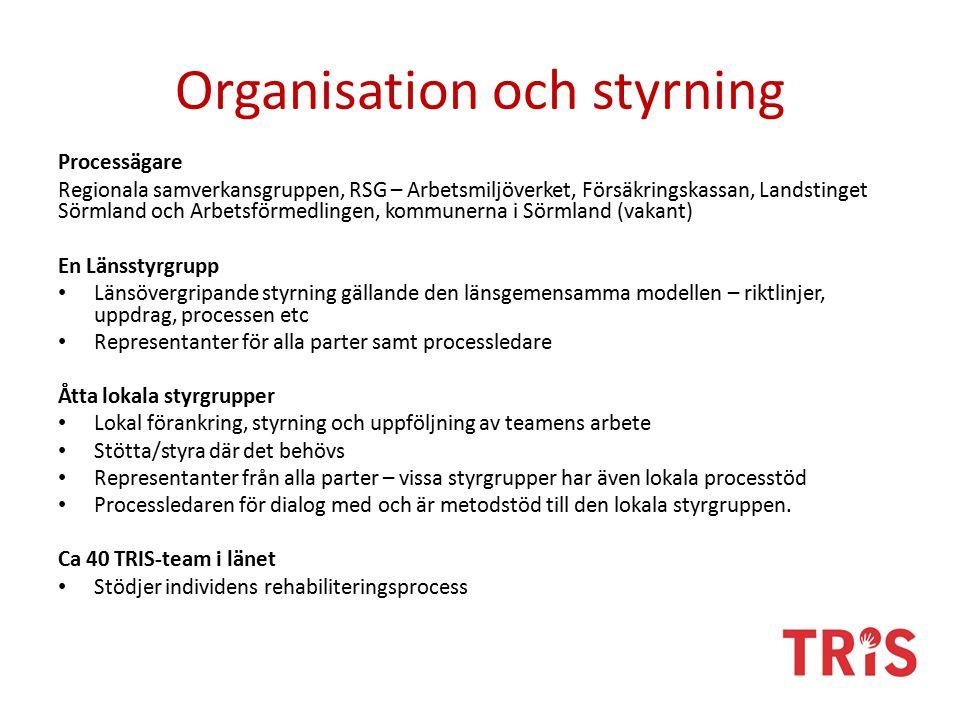 Organisation och styrning