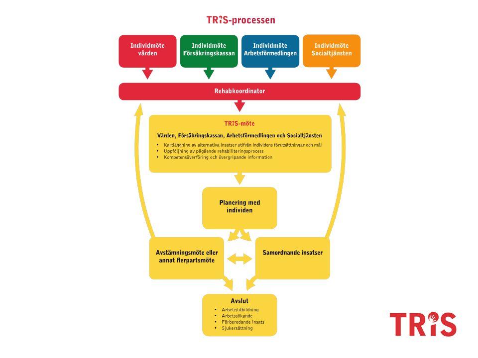 Beskriv kort hur det kan gå till utifrån ett ärende och TRIS-processen