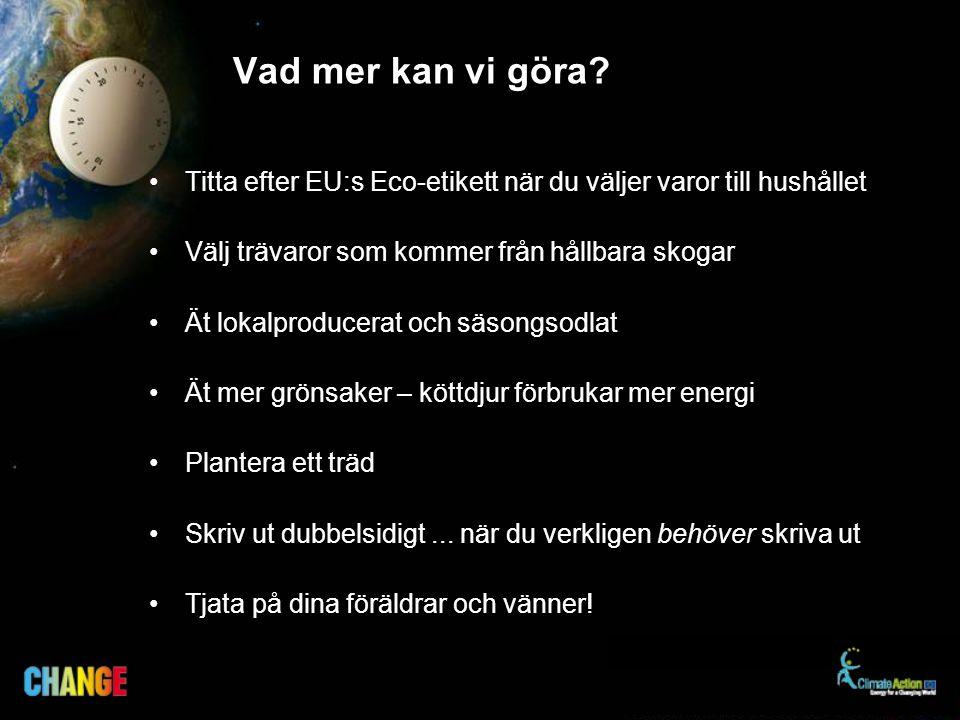 Vad mer kan vi göra Titta efter EU:s Eco-etikett när du väljer varor till hushållet. Välj trävaror som kommer från hållbara skogar.