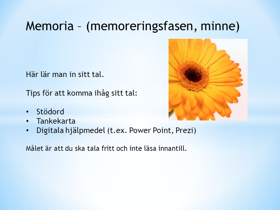 Memoria – (memoreringsfasen, minne)