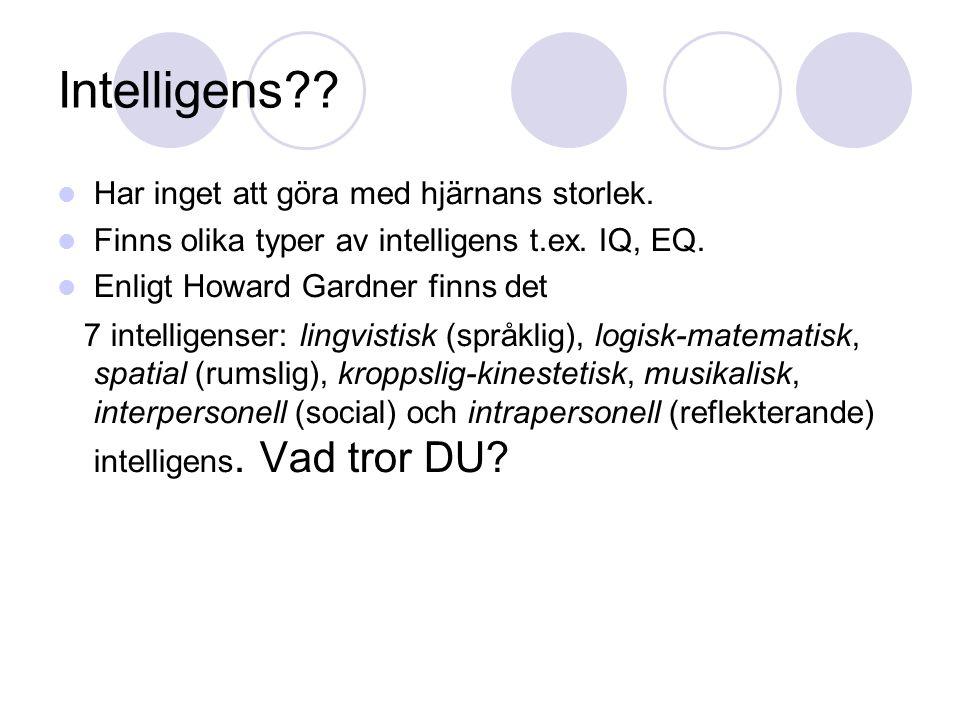 Intelligens Har inget att göra med hjärnans storlek.