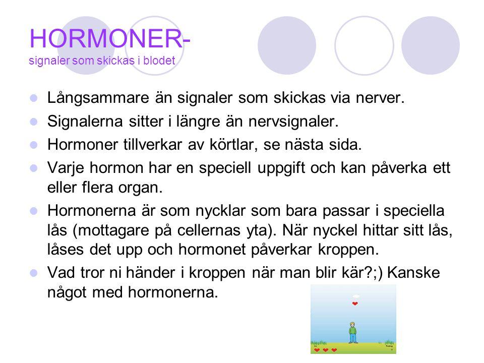 HORMONER- signaler som skickas i blodet