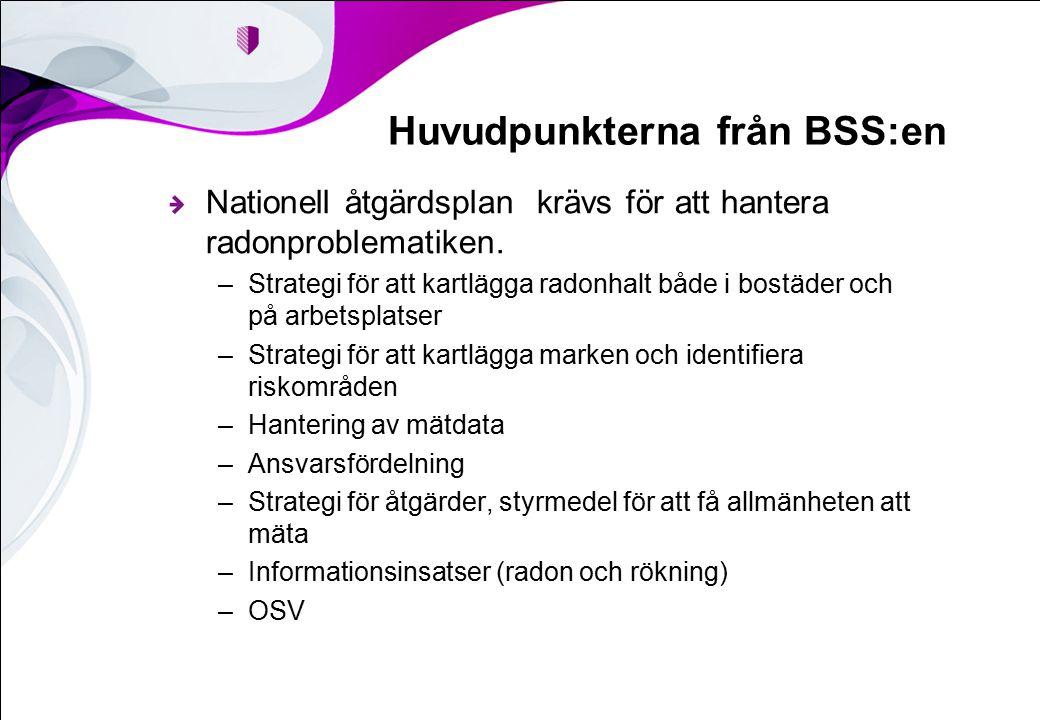 Huvudpunkterna från BSS:en