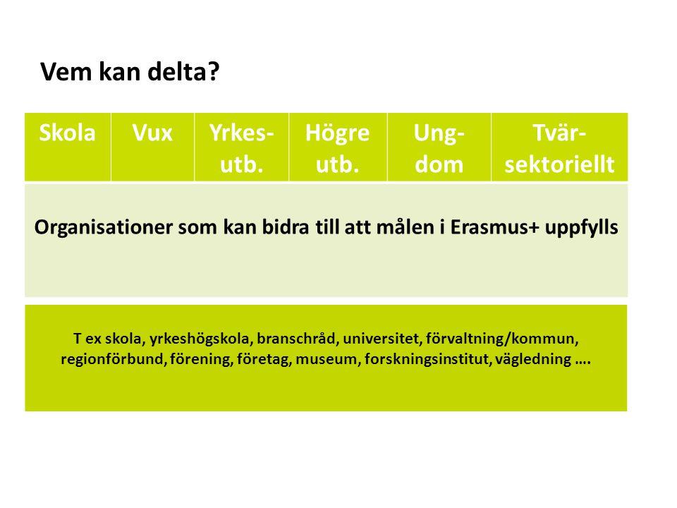Organisationer som kan bidra till att målen i Erasmus+ uppfylls