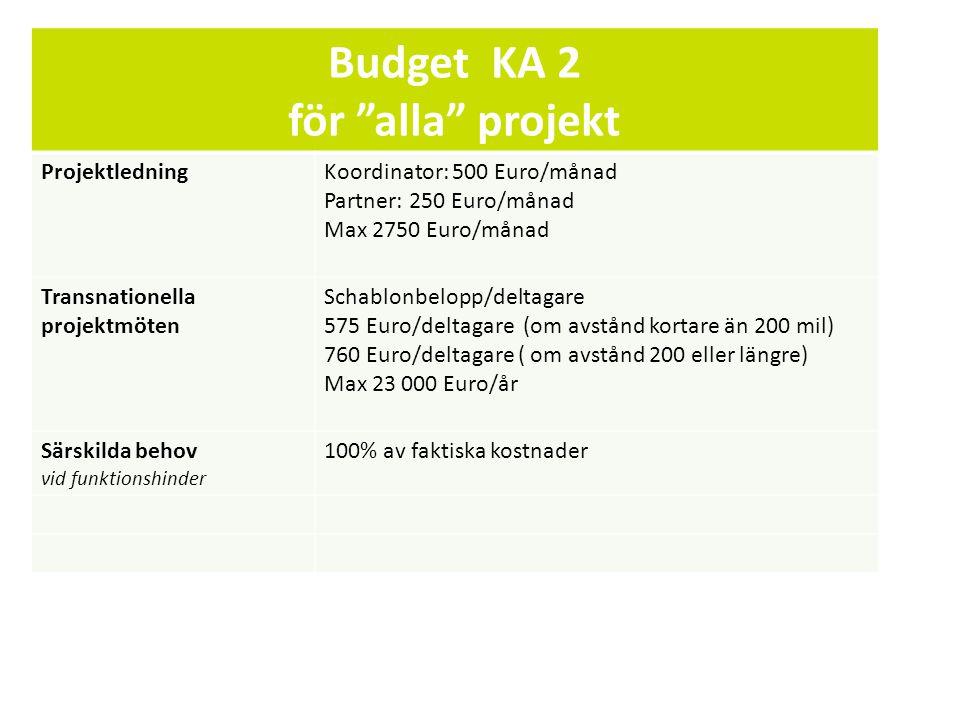 Budget KA 2 för alla projekt
