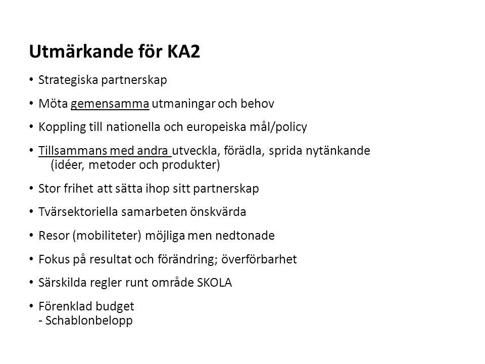 Utmärkande för KA2 Strategiska partnerskap