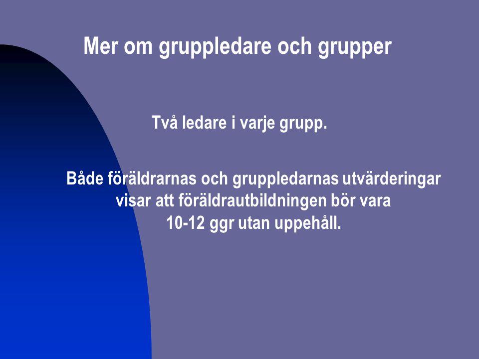 Mer om gruppledare och grupper Två ledare i varje grupp.