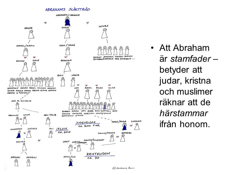 Att Abraham är stamfader – betyder att judar, kristna och muslimer räknar att de härstammar ifrån honom.