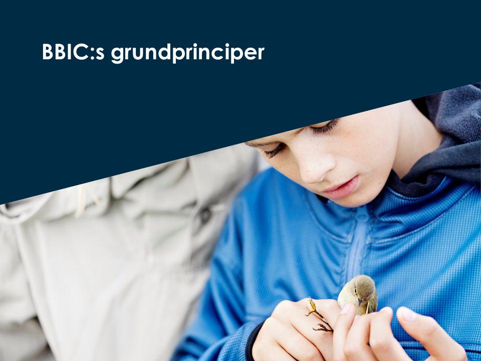 BBIC:s grundprinciper